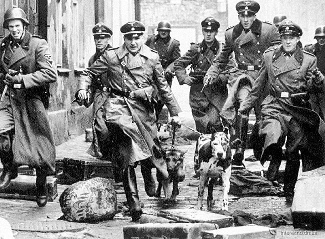 эсесовцы с собаками